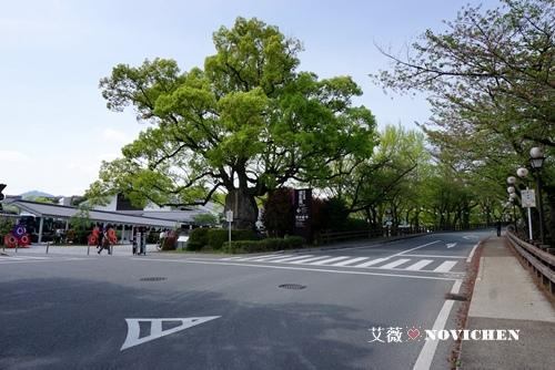 熊本城_25.JPG