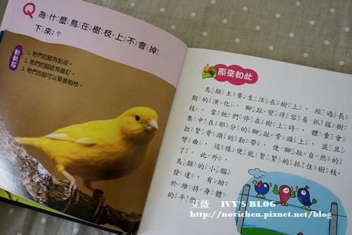 解開好奇心_17.JPG