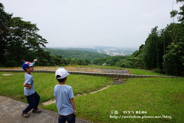 仁和步道賞桐花_13.JPG