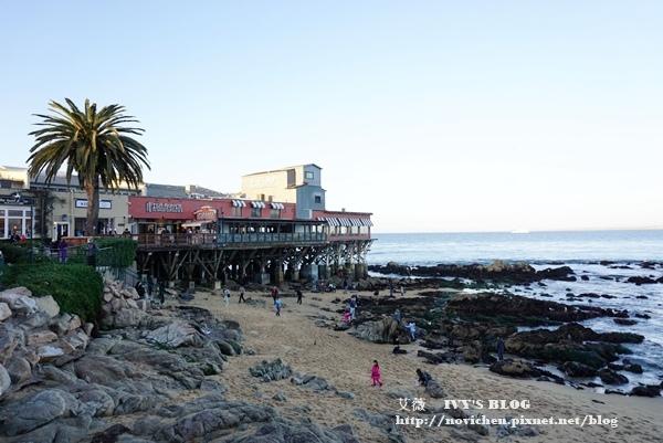 Monterey_20.JPG
