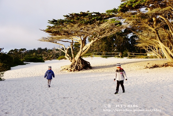 Carmel-by-the-Sea_22.JPG