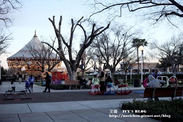 Nut Tree_2.JPG