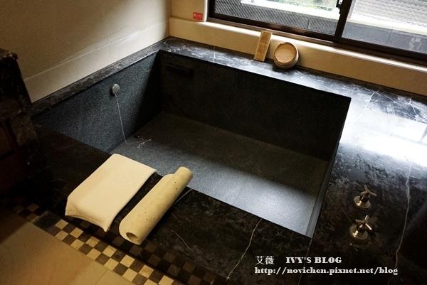 日月潭馥麗大飯店_18.JPG