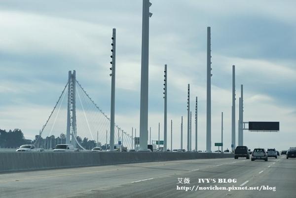 海灣大橋_4.JPG