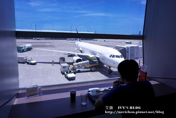 熊本熊彩繪機_23.JPG