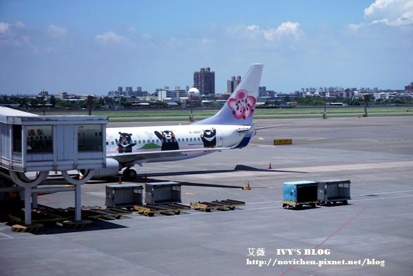 熊本熊彩繪機_25.JPG