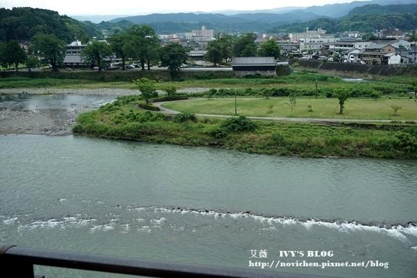 清流山水花_33.JPG