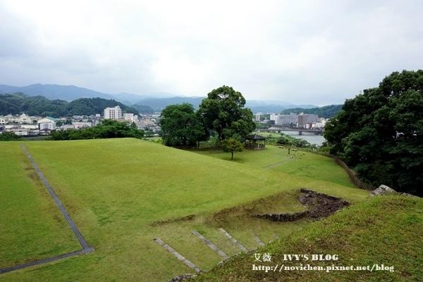 清流山水花_82.JPG