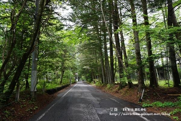 輕井澤交通_33.JPG