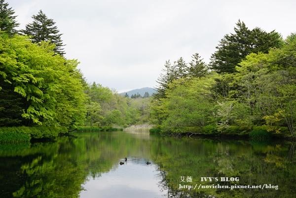 輕井澤交通_35.JPG