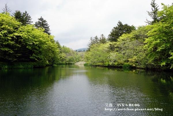 雲場池_5.JPG
