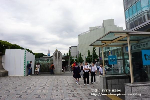 明治神宮_1.JPG