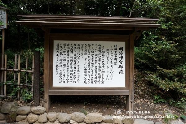 明治神宮_10.JPG