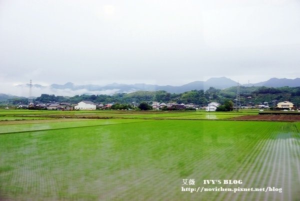 伊三郎新平_17.JPG