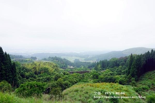 伊三郎新平_35.JPG