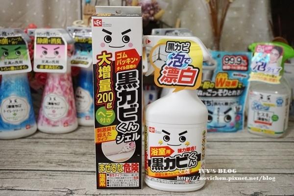 日本LEC_2.JPG