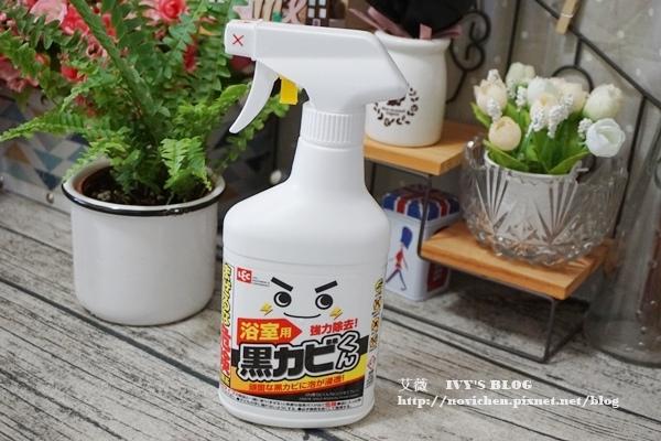 日本LEC_9.JPG