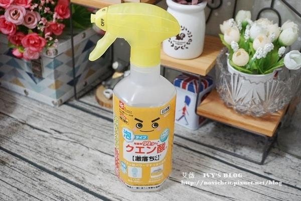 日本LEC_17.JPG