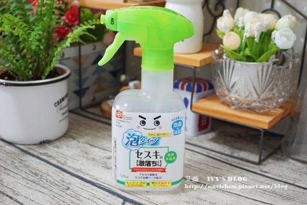 日本LEC_24.JPG
