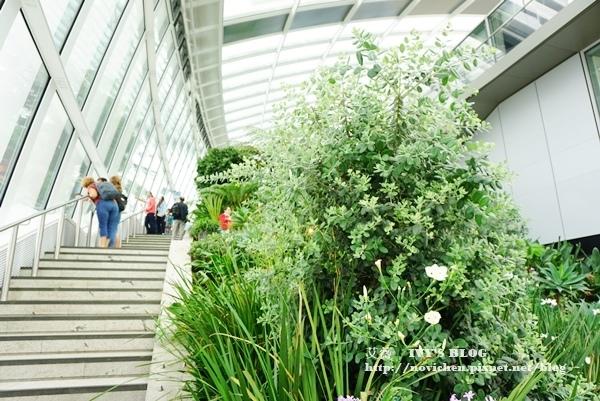 Sky Garden_16.JPG