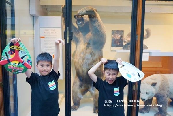 自然史博物館_15.JPG