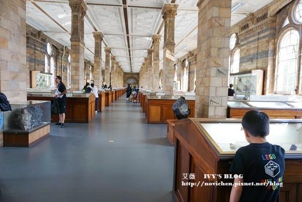 自然史博物館_18.JPG