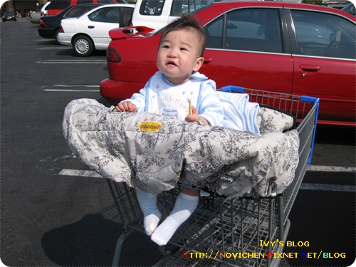 [9M3W] 愛坐推車的豆仔_1.jpg