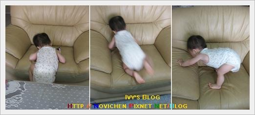 [13M2W] 豆仔爬沙發.jpg