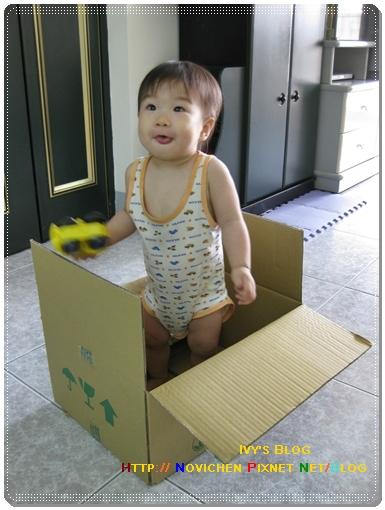 [14M2W] 紙箱中_1.JPG