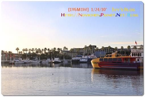 [1Y6M1W] 0124 Long Beach_4.JPG