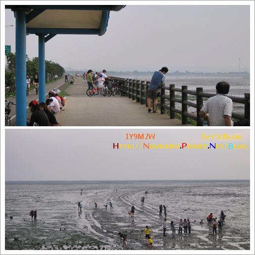 [1Y9M2W] 南寮漁港_6.jpg