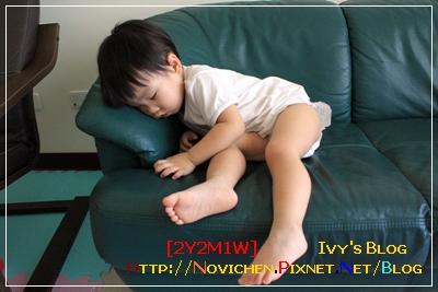 [2Y2M1W] 累到睡著.JPG