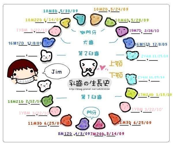 牙齒圖1.JPG