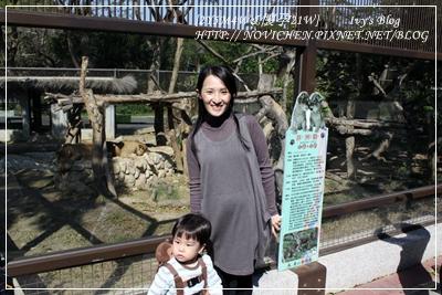 [2Y5M4W&懷孕21W] zoo_1.JPG