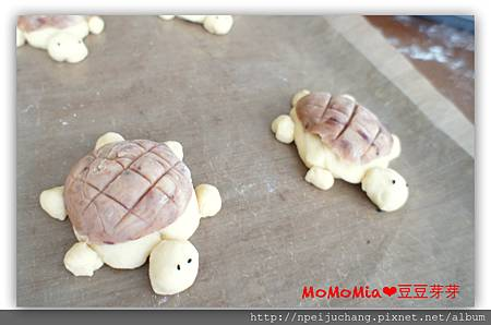 turtle bread_1