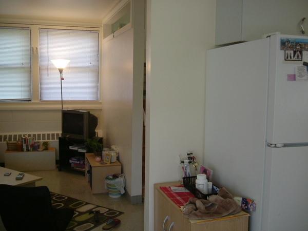 冰箱旁的置物櫃