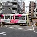 IMG_7254.JPG