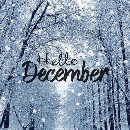 Hello December #Christmas%26;winter❄.jpg