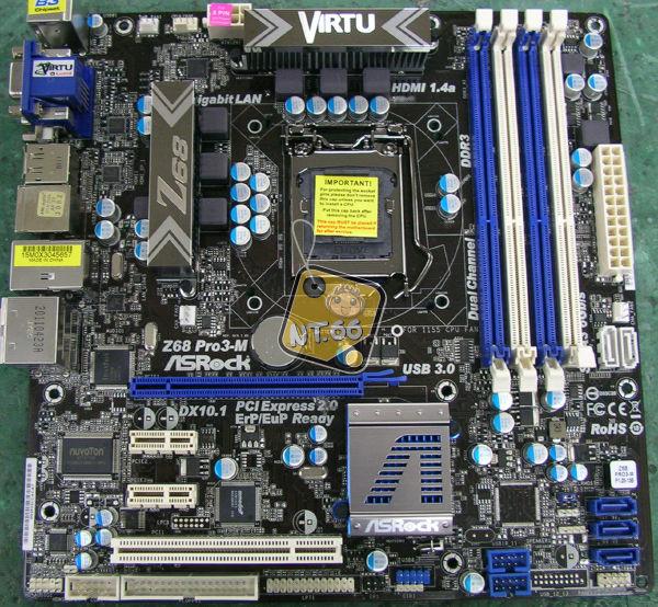 Z6803.jpg