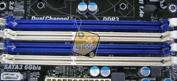 Z6805.jpg