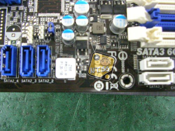 Z6806.jpg