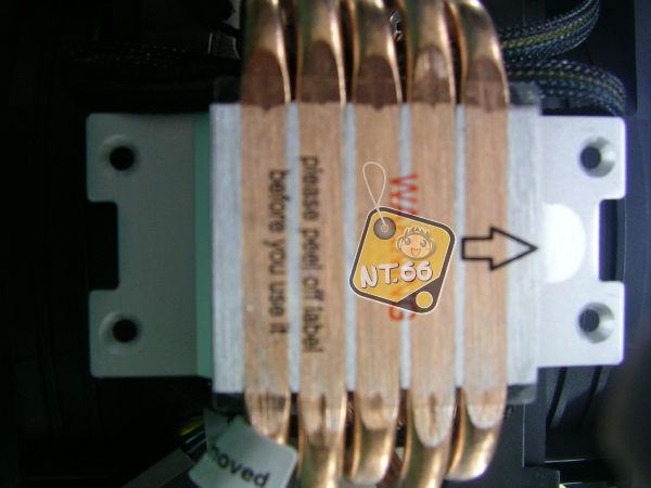X7925.jpg