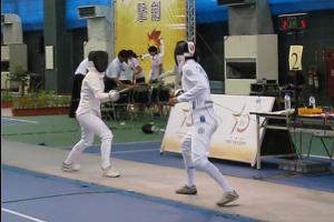 9713_fencing.jpg