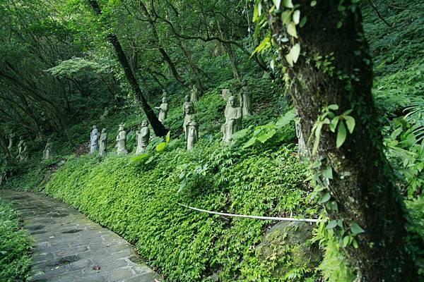 密林中的羅漢步道.jpg