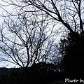 nEO_IMG_20151010_131052.jpg