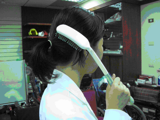 長柄梳子(二)