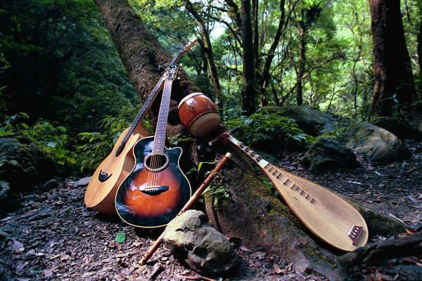 林中光樂團