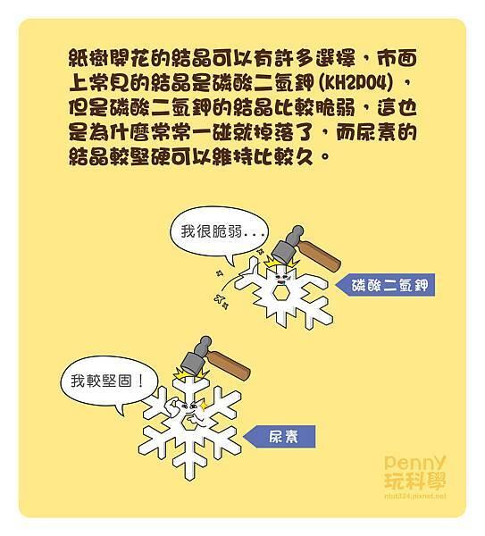 紙樹開花-06.jpg
