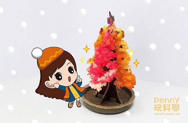 紙樹開花-07.jpg