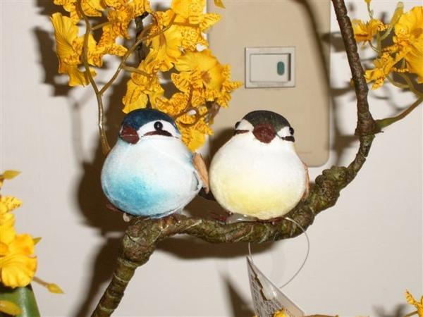 盆栽上的小鳥